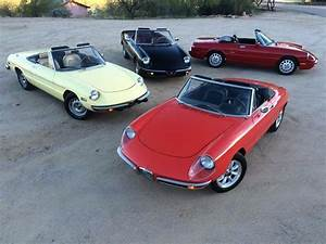 Alfa Romeo Nice : 65 best alfa romeo spider images on pinterest alfa romeo spider cars and vintage cars ~ Gottalentnigeria.com Avis de Voitures