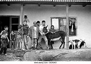 1270 best images about Roma (Gypsies) on Pinterest | Gypsy ...