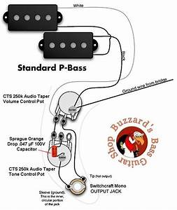 Dimarzio P Bass Wiring Diagram