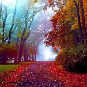 Stunning Colorful Nature Clicks - XciteFun.net