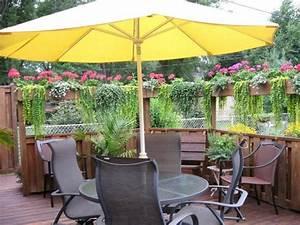 Hängende Pflanzen Für Draußen : sichtschutz f r terrasse und balkon drau en versteckt ~ Sanjose-hotels-ca.com Haus und Dekorationen