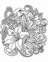 Coloring Adults Floral Bird Bouquet sketch template