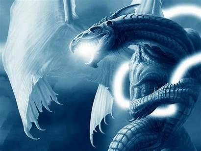 Dragon Screensavers Wallpapers Desktop Windows