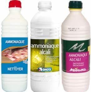 ammoniaque tout pratique With nettoyage tapis avec quel produit pour nettoyer un canapé en tissu