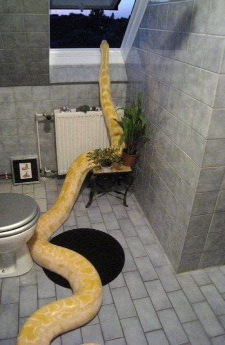 imagine walking   bathroom    heading