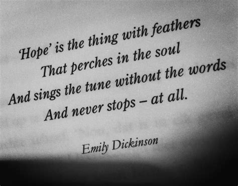 hope     feathers  perches   soul