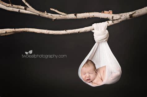 hanging photos manhattan s top modern newborn photographer sweet little chelsea bay area family