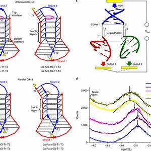 Wiring Diagram T1 Backbone