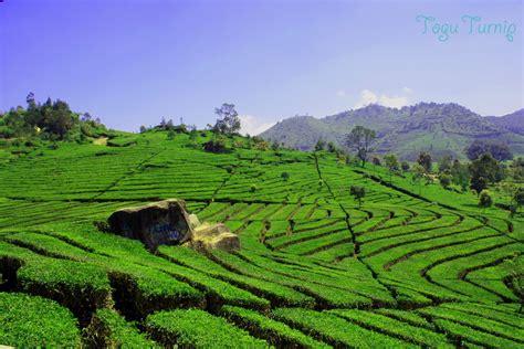 pemandangan  indah foto dunia alam semesta indonesia