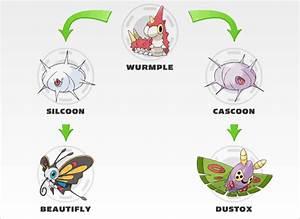 Evolucao Pokemon Emerald Poochyena Images | Pokemon Images