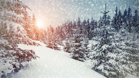 Winter Landscape Desktop Wallpaper Wallpaper Winter Snowfall Forest Sunlight 5k Nature 604