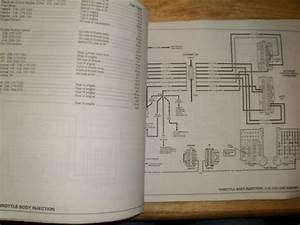 Find 1990 Chevrolet S10  U0026 S10 Blazer Electrical Diagnosis