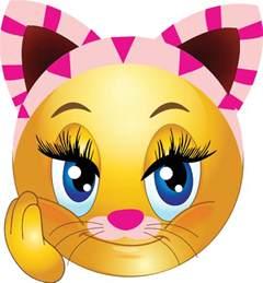 cat emoticons kitty cat smiley symbols emoticons