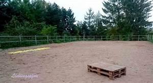 Podest Pferd Selber Bauen : agility parkours f r das pferd pony lieblingspfote rund um hund katze und pferd ~ Yasmunasinghe.com Haus und Dekorationen