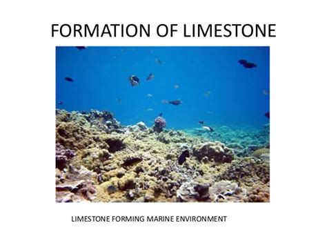 2 formation of limestone