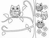 Coloring Owl Printable Adult Owls Adults Popular sketch template