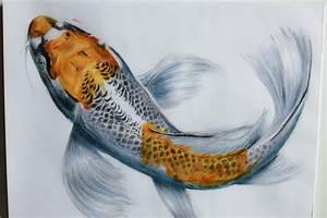 Photos: Koi Fish Drawings Realistic, - DRAWING ART GALLERY