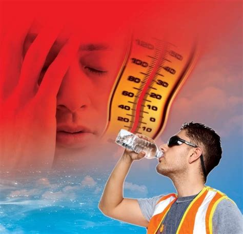 Can't Stand The Heat? Tips On Managing Heat Stress