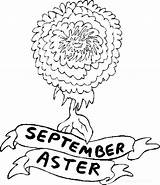 September Coloring Pages Flower Aster Flowers Printable Birthstone Month Coloringpages101 Away Pdf sketch template