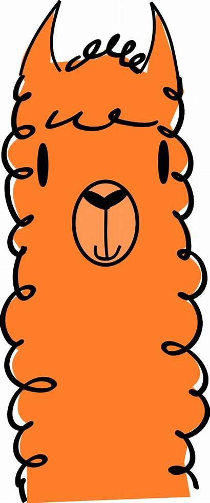 Alpaca Llama Clip Clipart Draw Lama Alpaka