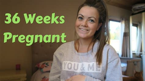 weeks pregnancy update section date youtube
