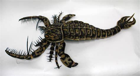escorpió Prehistoric animals Prehistoric creatures