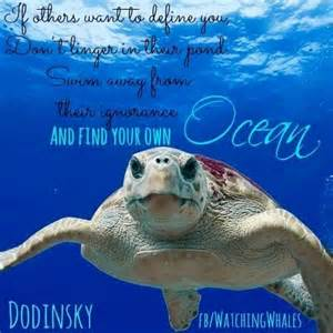 Sea Turtle Pictures with Quotes