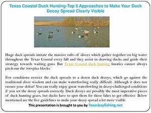 Top 5 Approaches To Make Your Duck Decoy Spread Clearly