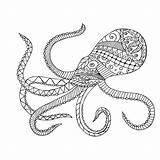 Squid Coloring Giant Octopus Drawing Adults Printable Animals Getdrawings Getcolorings sketch template