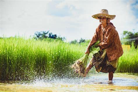 ภูมิทัศน์ภาคเกษตรไทย จะพลิกโฉมอย่างไรสู่การพัฒนาที่ยั่งยืน?