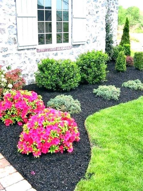 shrubs  front yard landscaping bushes  house