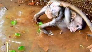 Big Baby Slide : poor maci slide down very healthy big baby really ~ A.2002-acura-tl-radio.info Haus und Dekorationen