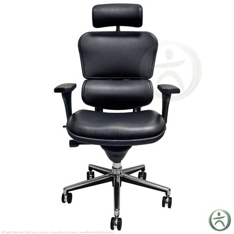shop raynor ergohuman chairs leather with headrest le9erg