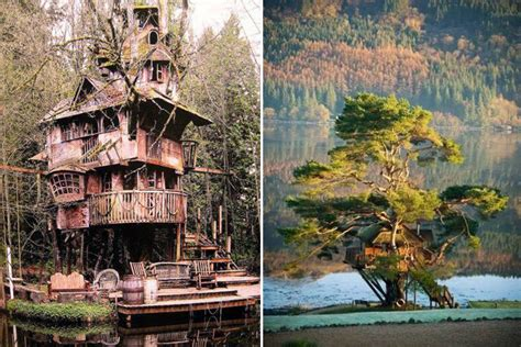 2,528,666 likes · 2,066,271 talking about this. Tree-rific Treehouses - Honestly WTF