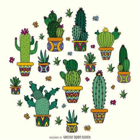 where to buy succulent cactus drawing design vector