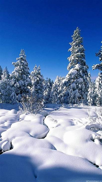 Winter Snow Iphone Wallpapers 1080p Backgrounds Nature