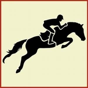 Hunter Jumper Horse with Rider