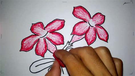 menggambar bunga kamboja jepang youtube