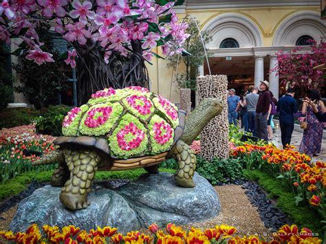 Bellagio Conservatory & Botanical Gardens, Las Vegas