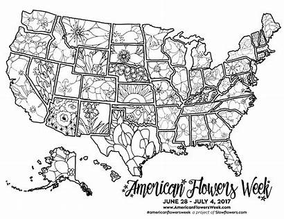 Coloring Map Usa Flowers State American Pages