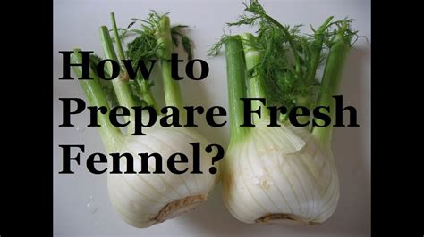 fennel french prepare cooking