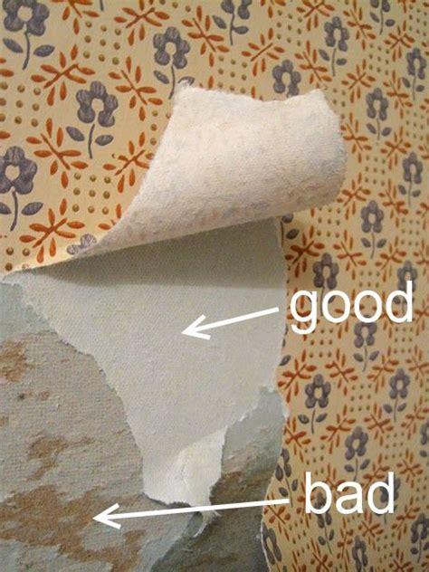 rid  wallpaper gallery