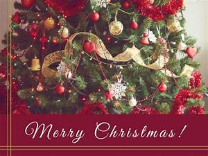 Christmas Card Maker Create Custom Photo Cards Online