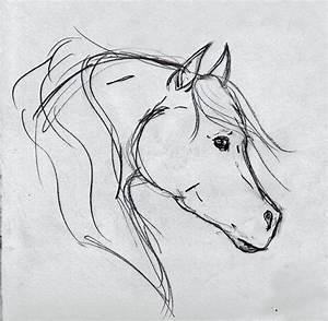 Horse head sketch by OnlyYouCan on DeviantArt