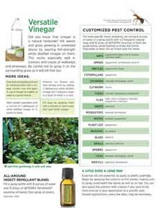 doTERRA Essential Oils Pest Control