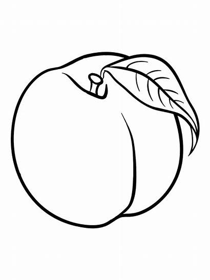 Peach Coloring Pages Coloringtop