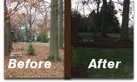 affordable lawn care  lenoir city tn brians