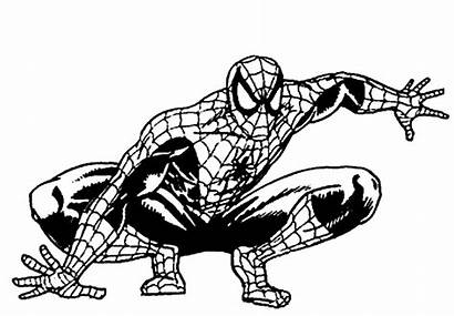 Spiderman Coloring Printable Drawing Colour