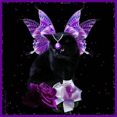 Purple Violeta Cats Kittens Cat Jeweled Glitter
