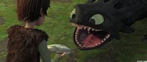 How to Train Your Dragon images Hiccup & Toothless HD ...